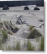 Gold Beach Oregon Beach Grass 18 Metal Print
