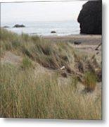 Gold Beach Oregon Beach Grass 24 Metal Print