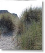 Gold Beach Oregon Beach Grass 5 Metal Print