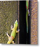 Gold Dusted Day Gecko Metal Print