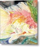 Gold Fish With Purple Metal Print