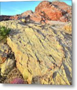 Gold Lava Flow In Valley Of Fire Metal Print