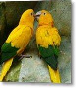 Gold Parakeets Metal Print