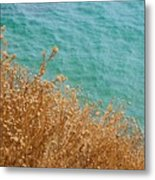 Gold Thistles And The Aegean Sea Metal Print