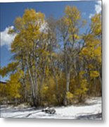 Golden Afternoon Metal Print by Kenneth Hadlock