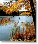 Golden Autumn Lake Metal Print