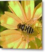Golden Bee Metal Print