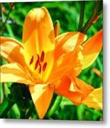 Golden Blossom Metal Print
