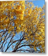 Golden Boughs Metal Print