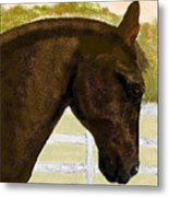 Golden Chance Metal Print