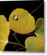 Golden Drop Metal Print
