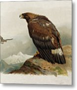 Golden Eagle By Thorburn Metal Print