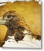 Golden Eagle Grunge Portrait Metal Print