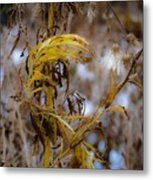 Golden End Metal Print