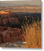Golden Evening Light Bryce Canyon 1 Metal Print