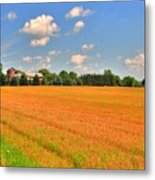 Golden  Field Metal Print