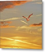 Golden Flight Metal Print