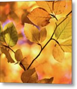 Golden Foliage Metal Print