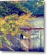 Golden Fall Foliage  Metal Print