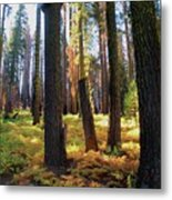 Golden Forest Bed Metal Print