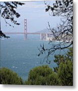 Golden Gate Bridge Through The Trees Metal Print