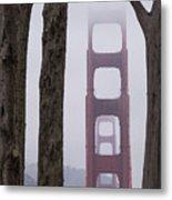 Golden Gate Through The Trees Metal Print