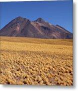 Golden Grasslands And Miniques Volcano Chile Metal Print