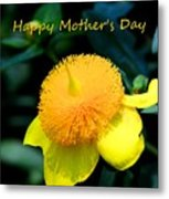 Golden Guinea Happy Mothers Day Metal Print
