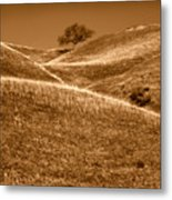 Golden Hills Of California Photograph Metal Print