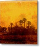 Golden Land Metal Print