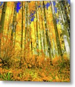 Golden Light Of The Aspens - Colorful Colorado - Aspen Trees Metal Print