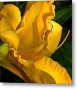 Golden Lily Watercolor Metal Print