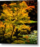 Golden Maple Metal Print