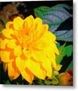 Golden Moment In The Morning Metal Print