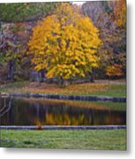 Golden Orb Metal Print