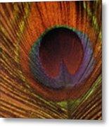 Golden Peacock Metal Print