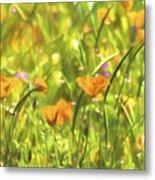 Golden Poppies In A Gentle Breeze  Metal Print