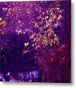 Golden Purples Metal Print