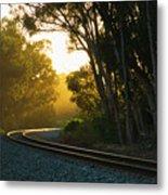 Golden Rails  9559l Metal Print