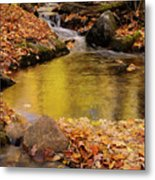 Golden Reflections In A Stream On The Blanchet Trail Gatineau Pa Metal Print