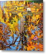 Golden Reflections On Lily Pond Metal Print