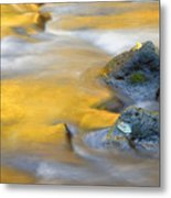 Golden Refuge Metal Print