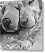 Golden Retriever Dog And Friend Metal Print