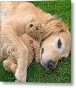 Golden Retriever Dog Teddy Bear Love Metal Print