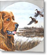Golden Retriever With Marsh Scene Metal Print