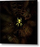 Golden Silk Metal Print