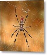 Golden Silk Spider 3 Metal Print