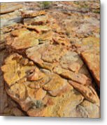Golden Slopes Of Valley Of Fire State Park Metal Print