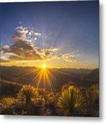 Golden Sunlight Desert Scene Metal Print
