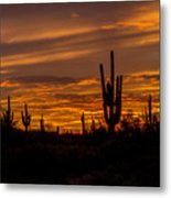 Golden Sunset Sky Metal Print